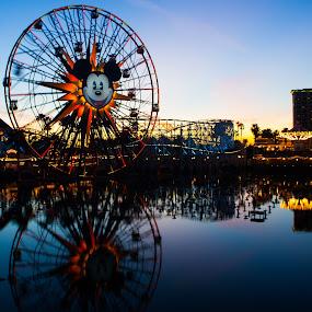 Disney Dusk by John M. Larson - City,  Street & Park  Amusement Parks ( reflection, california adventure, disneyland, disney, light, dusk, ferris wheel,  )