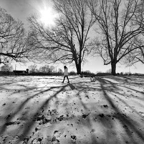 Icy Walk by Javier Luces - Landscapes Weather ( b&w, winter, black and white, woman, snow, trees, walk, people )