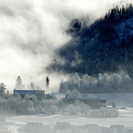 good morning fog by Thor Erik Dullum - Landscapes Weather