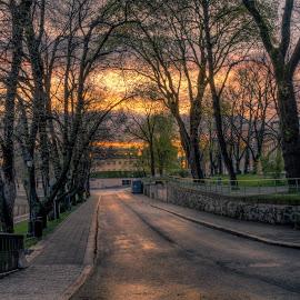 Dawn by Bojan Bilas - City,  Street & Park  Street Scenes ( dawn, turku, city )
