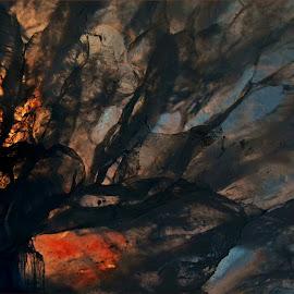 Forest scene by Kittie Groenewald - Abstract Patterns