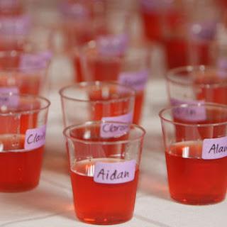 Flavored Vodka Shots Recipes