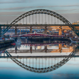 Tyne Bridges by Adam Lang - Buildings & Architecture Bridges & Suspended Structures ( river tyne, gateshead, reflections, newcastle, bridges )