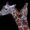 Giraffe-005.jpg