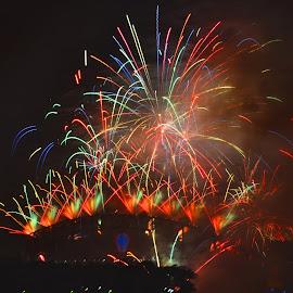 Display To Remember by Kamila Romanowska - Abstract Fire & Fireworks ( new year, 2015, australia, nye, fireworks, celebration, sydney )