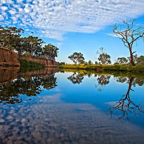 Still Morn by Peter Cannon - Landscapes Waterscapes ( water, clouds, sky, nature, waterscape, blue, cloudscape, reflections, trees, landscape, landscapes )