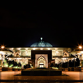 Iron by Danial Abdullah - Buildings & Architecture Other Exteriors ( precint 3, sultan, ts, tilt, mosque, putrajaya, at night, ts-e, iron, tilt shift, iron mosque, 7d, mizan, night, light )