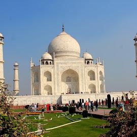 Wah Taj..................... by Soutik Halder - Buildings & Architecture Statues & Monuments ( taj mahal, agra, india, architecture, mogul )