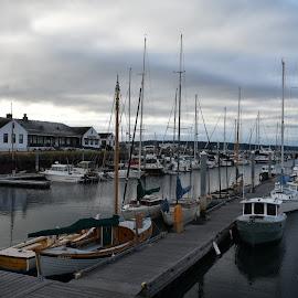 Sail boats in Point Hudson Marine  by Terry Oviatt - Transportation Boats