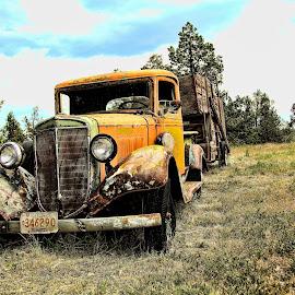 by Jon Morgan - Transportation Automobiles