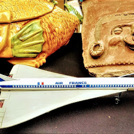 Concorde and other friends by Stephen Lang - City,  Street & Park  Markets & Shops