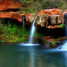 Fern Pool Karijini by Steve Hatton - Landscapes Waterscapes ( karijini, dales gorge, waterscape, australia, pilbara, fern pool, landscape, water fall, karijini national park, panorama, western australia )