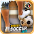 Play Street Soccer 2017 Game file APK Free for PC, smart TV Download