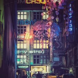 Ul Ruska by Adam Lang - City,  Street & Park  Street Scenes ( neon, ruska, wroclaw, alley, poland )