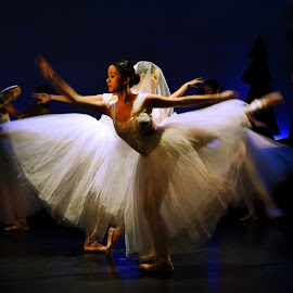 Gisele - Act 2 by Joni Chng - People Musicians & Entertainers ( dancers, performance, choreography, gisele, ballet, dance )