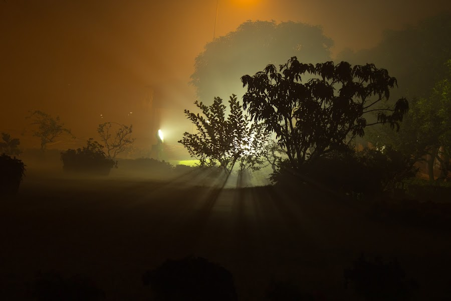Mystery lies within  by Snehasis Daschakraborty - Novices Only Abstract