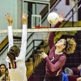 The Spike by Jackie Nix - Sports & Fitness Other Sports ( volleyball, sports, females, prattville high school, women,  )
