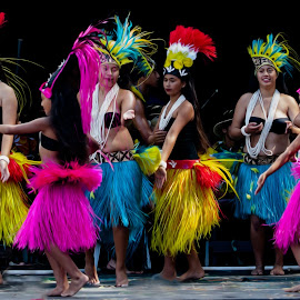Festival by Richard Kam - People Musicians & Entertainers ( islander, auckland, cultural, pacific, festival, island )