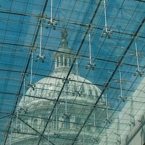 US Capitol Dome by Gwyn Goodrow - Buildings & Architecture Public & Historical ( patriotic, dome, skylight, capitol, united states, public building, historic,  )