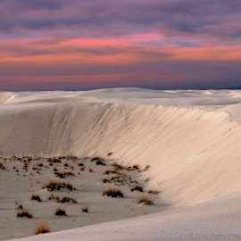 Shifting Sands II by Shawn Thomas - Landscapes Deserts
