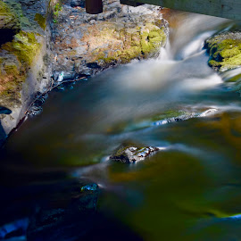 Little Bushkill Creek by Santford Overton - Landscapes Waterscapes ( landscapes, waterscapes, light, nature, longexposure, river, water, trees, colors )
