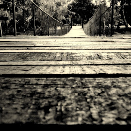 Hanging Past by Pranavesh NeverSerious - Novices Only Objects & Still Life ( hanging, old, b&w, nature, bridge )