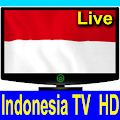 App Indonesia TV Channels HD apk for kindle fire