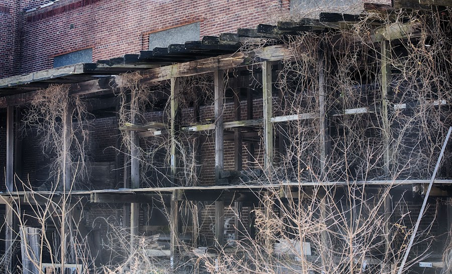 Back of Building C  by Lorraine D.  Heaney - Buildings & Architecture Decaying & Abandoned (  )