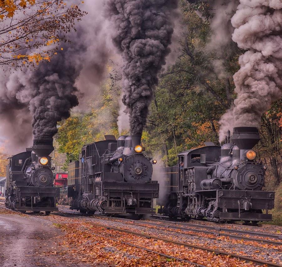 Steam Power by Mike Yeatts - Transportation Trains ( steam engine, west va, autumn, west virginia, cass scenic railroad, steam train, fall, nikon, trains )