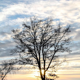 by Marjorie Bazluki - Landscapes Sunsets & Sunrises