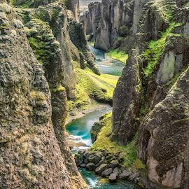 Fjaðrárgljúfur Canyon Iceland by Marc Sharp - Landscapes Mountains & Hills ( iceland, nature, colorful, fjaðrárgljúfur, canyon, landscape )