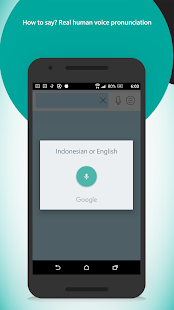Indonesian English Dictionary - screenshot
