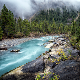 September Rain by Robert Fawcett - Landscapes Travel ( mountains, nature, canada, fog, forest, places, travel, landscape, yoho )
