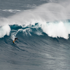 Wild Ride by Keith Sutherland - Sports & Fitness Surfing