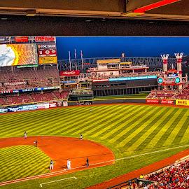 Night Baseball by Pat Lasley - Sports & Fitness Baseball ( great american ballpark, reds, baseball, cincinnati, brewers )