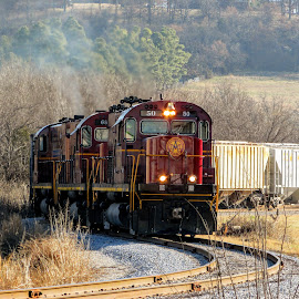 Industry Track by Rick Covert - Transportation Trains ( railroad, locomotive, arkansas, railroad tracks, arkansas photographer, ozarks, trains )