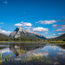 mount Rundle on the water by Cheryl Portmann - Landscapes Mountains & Hills ( canadian national parks, mountains, mount rundle, reflections, rockies, banff )