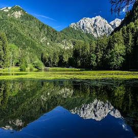 Planšarsko jezero by Bojan Kolman - Landscapes Waterscapes