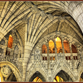 Canadian Parliament by Diana Campeanu - Buildings & Architecture Other Interior ( parliament, canada, royal, neo gothic, architecture )