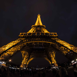 eiffel tower by Anand Raghavan - Buildings & Architecture Statues & Monuments ( paris, eiffel tower, fisheye, eiffel, france )