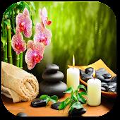 Download Massage APK on PC