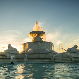 by Donna Sparks - City,  Street & Park  Fountains ( michigan, belle isle, fountain, dusk )