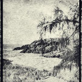 Hawaii Ocean Cove by Joseph Vittek - Digital Art Places