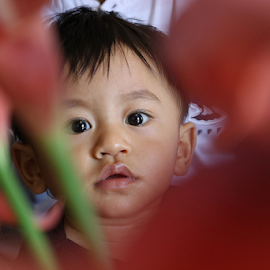 Junot Lazzaro Selanno by Kelvin Austin - Babies & Children Child Portraits