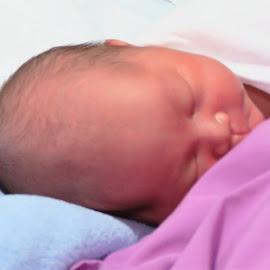 3rd Newborn by Dennis  Ng - Babies & Children Babies (  )