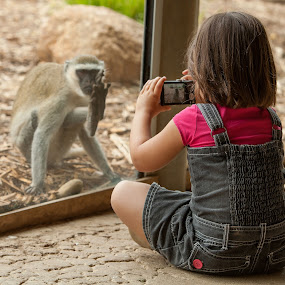Child Photographer by Peter Cannon - Babies & Children Children Candids ( child, camera, photographer, wildlife, cute, photo, monkey )