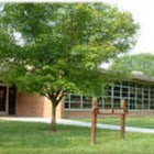 Elm Elementary School