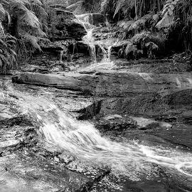 leura cascades by Reygan Tomalon - Novices Only Landscapes