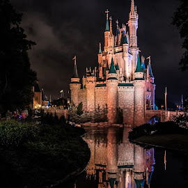 Cinderellas Castle by Russell McFarland - Buildings & Architecture Other Exteriors ( walt disney world, disney world, orlando, cinderellas castle, disney, cinderella )