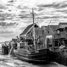 by Lieven Lema - Transportation Boats ( 2013, wolphaertsdijk, yerseke, zeeland, zierikzee )